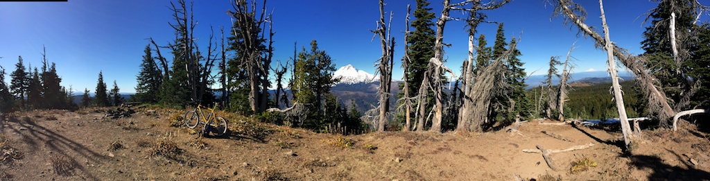Panorama from Lookout Mt., with Jefferson, Hood, Rainier and Adams